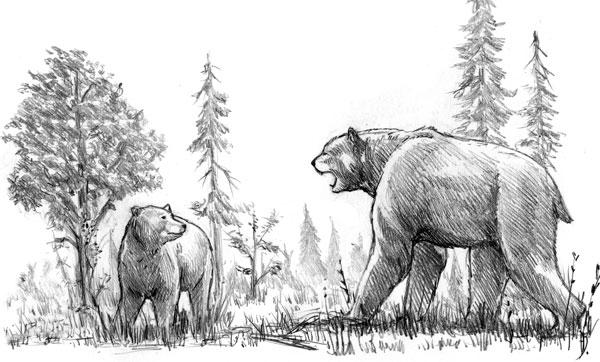 http://www.paleospot.com/illustrations/Short-faced-bear-vs-grizzly.jpg